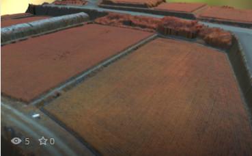 水稲圃場(フォールスカラー)